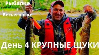 4 день нашего девятидневного рыболовного приключен...