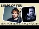 Ed Sheeran - Shape of You harmonica cover